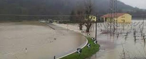 vigna-alluvione