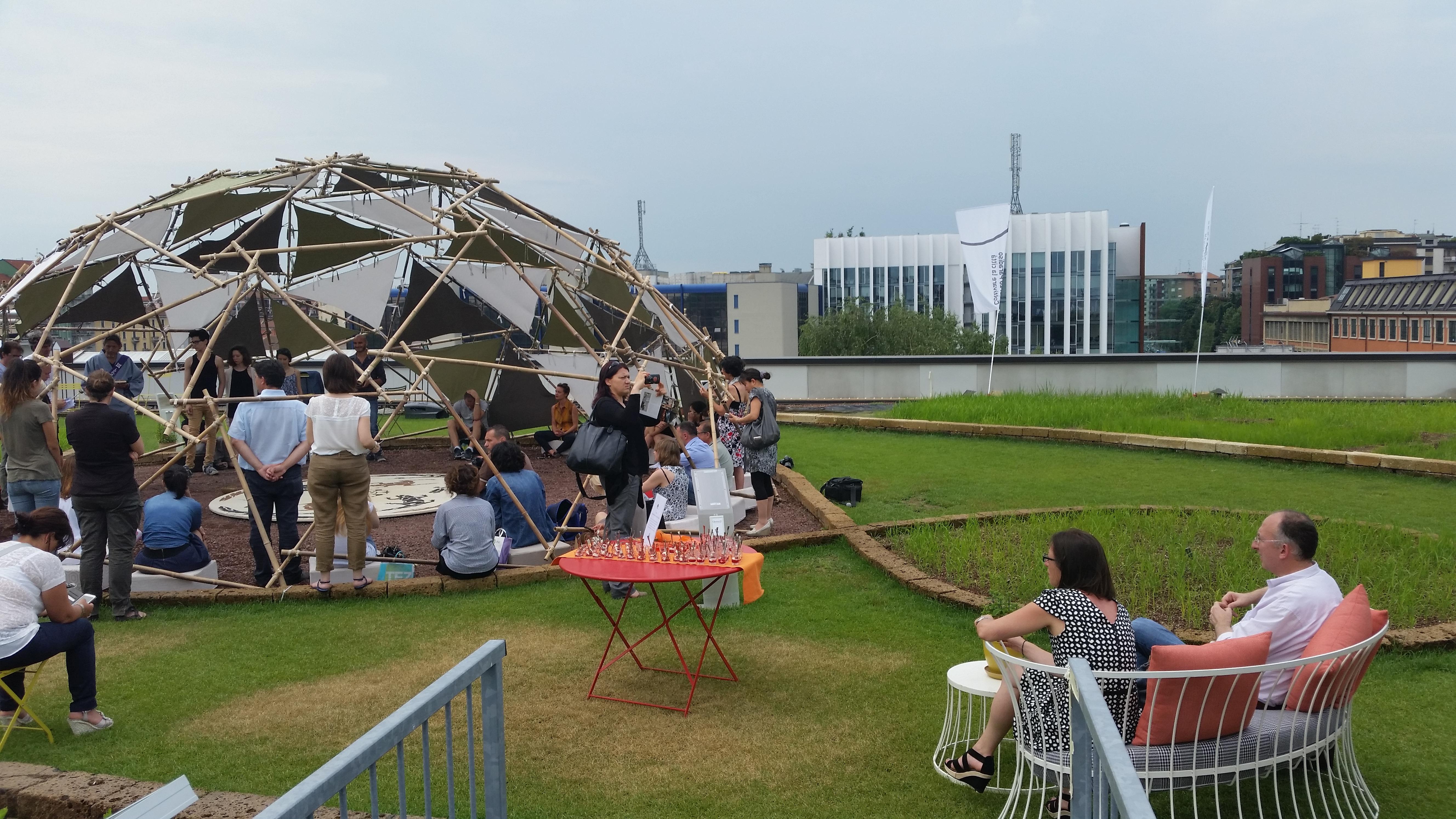 Milano una risaia sul tetto per promuovere il riso spazi food - Terrazza sul tetto ...